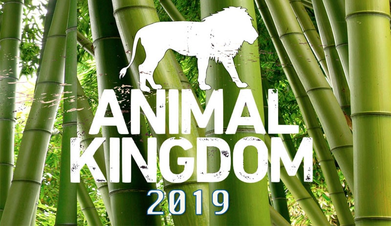 Animal Kingdom 2019